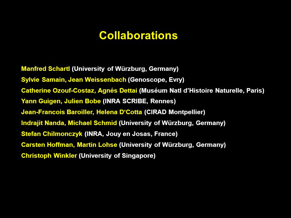 Collaborations Manfred Schartl (University of Würzburg, Germany)