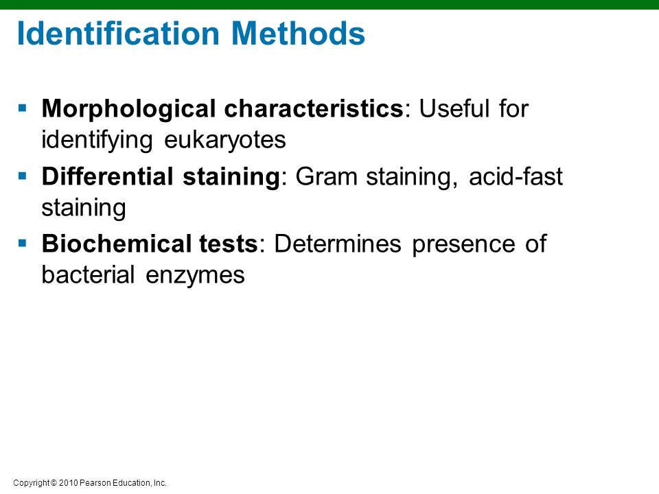 identification of morphological and physiological characteristics of unknown bacteria There are several tests you need to conduct in order to know the characteristics ( biochemical, morphological, cultural, molecular, physiological) of the organism.