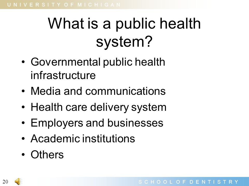 What is a public health system