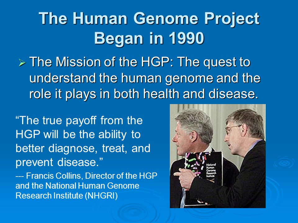 essay 2002 the human genome illustrates both continuity and change Sample ap biology multiple-choice the following are two of the free response questions from the 2002 the human genome illustrates both continuity and change.