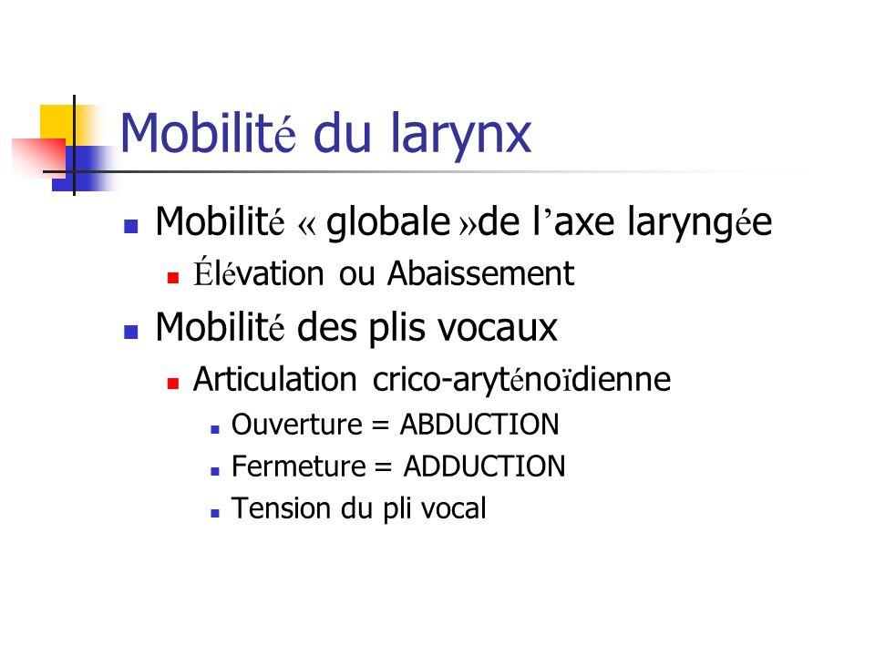 Mobilité du larynx Mobilité « globale »de l'axe laryngée