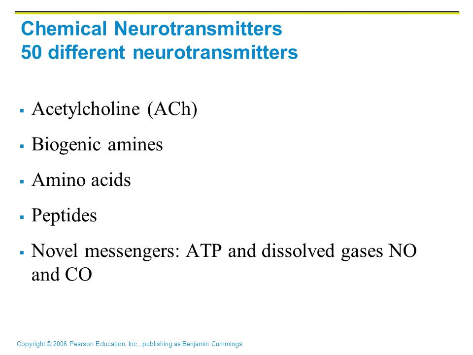 Chemical Neurotransmitters 50 different neurotransmitters