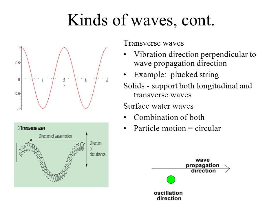 Kinds of waves, cont. Transverse waves