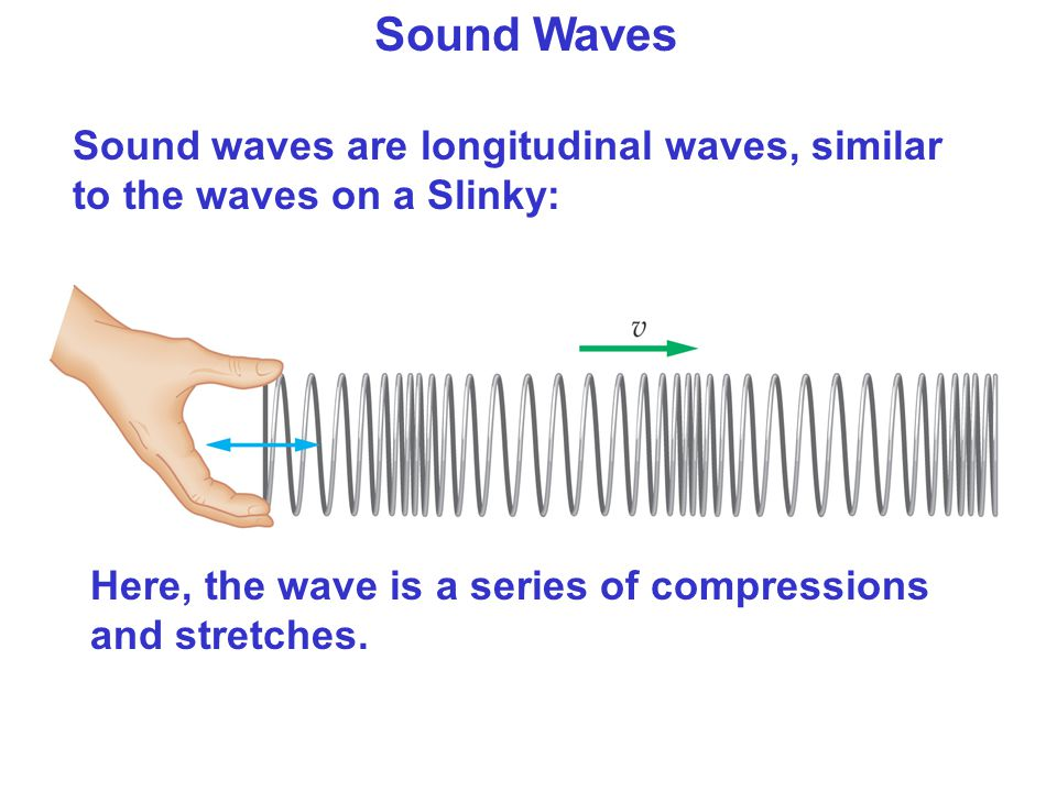 Sound Waves Sound waves are longitudinal waves, similar to the waves on a Slinky: Here, the wave is a series of compressions and stretches.