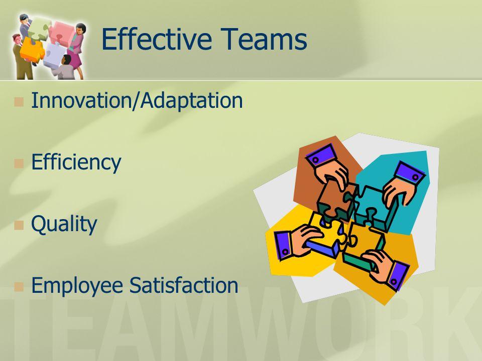 Effective Teams Innovation/Adaptation Efficiency Quality