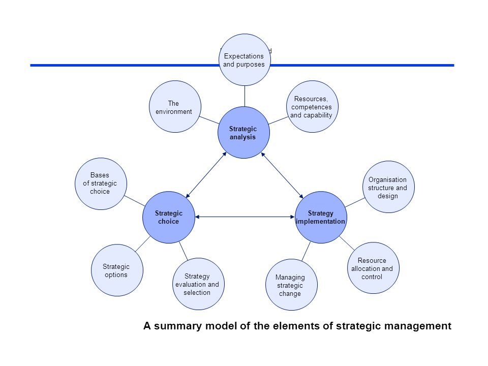 managing information systems strategy and organisation pdf