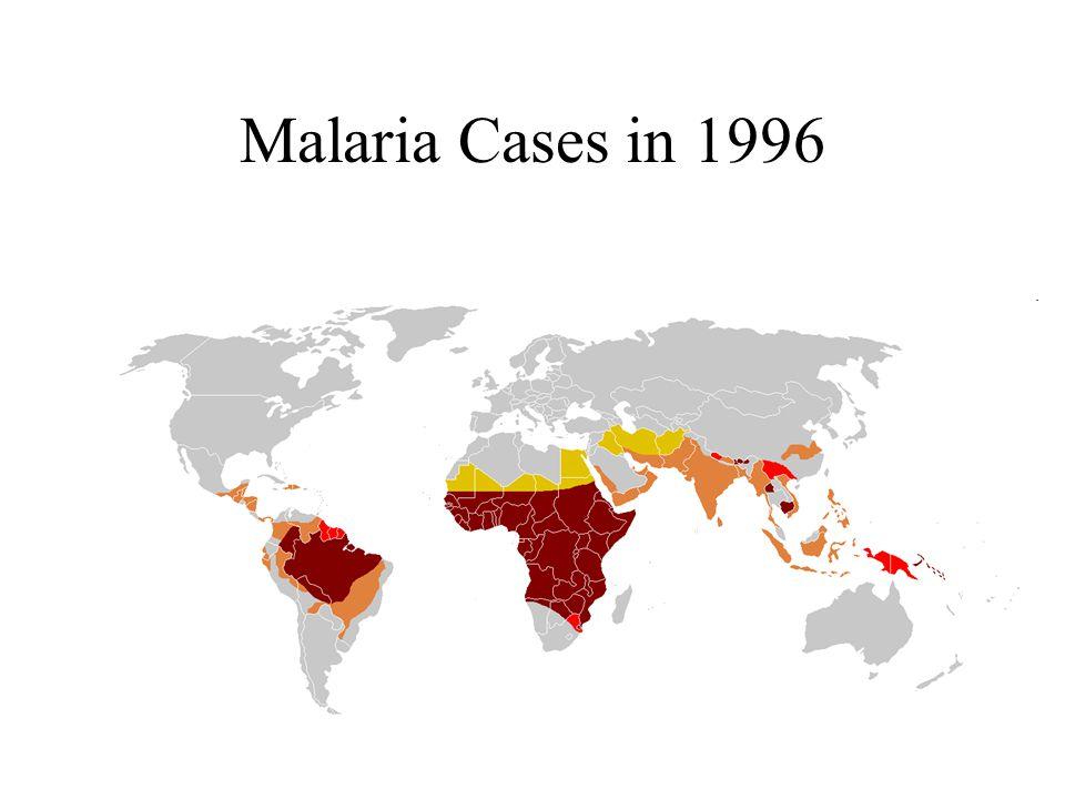Malaria Cases in 1996