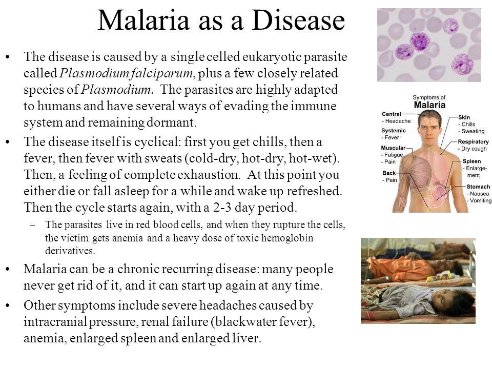 Malaria as a Disease