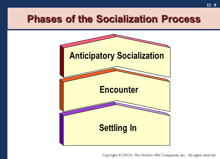 stages of the socialization process Socialization is the process through which we are taught the norms, values, and customs of our society or social group.