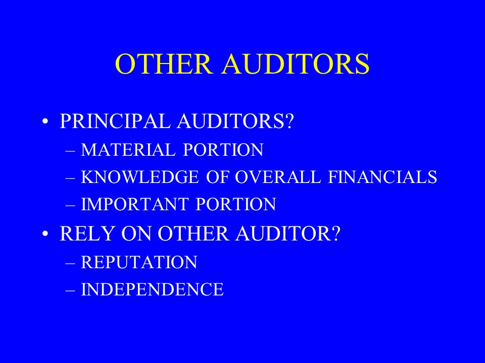 OTHER AUDITORS PRINCIPAL AUDITORS RELY ON OTHER AUDITOR