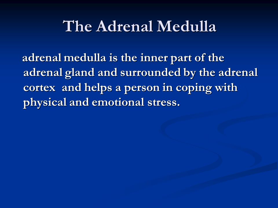 The Adrenal Medulla