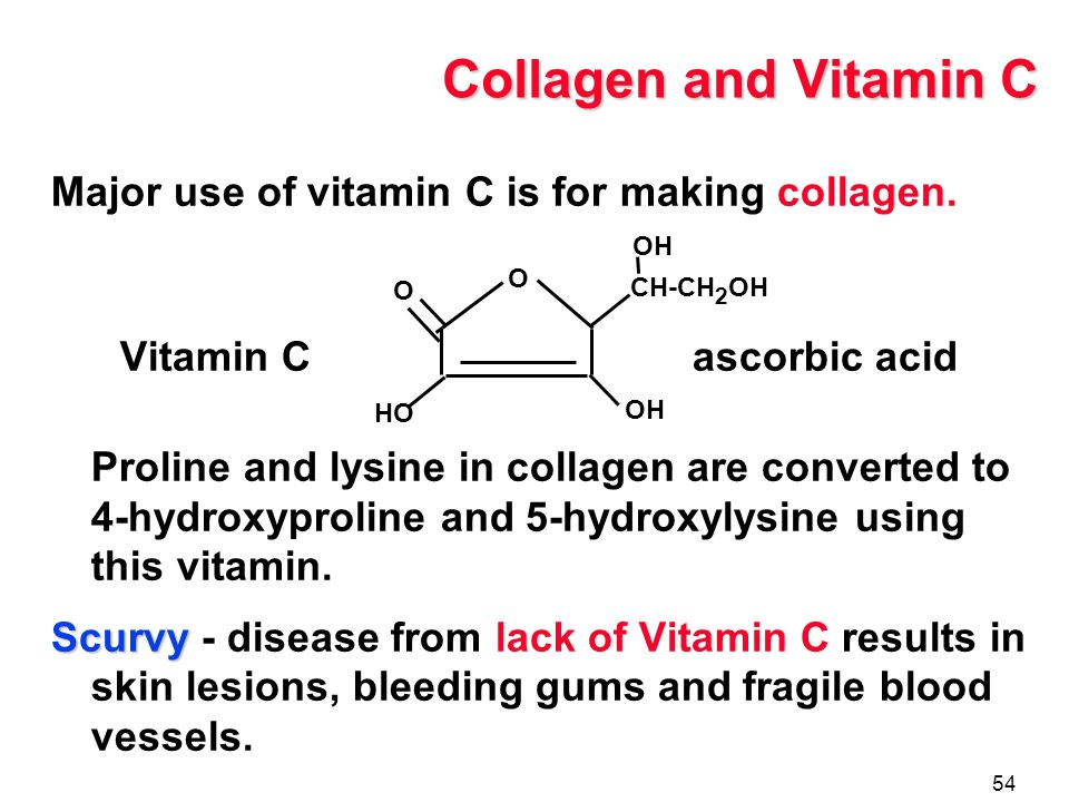 Making History With Vitamin C Powerpoint: Proteins The Function Of Proteins Amino Acids The Peptide