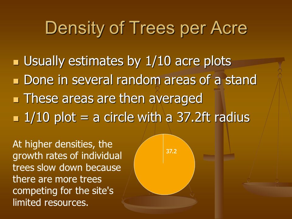 Density of Trees per Acre