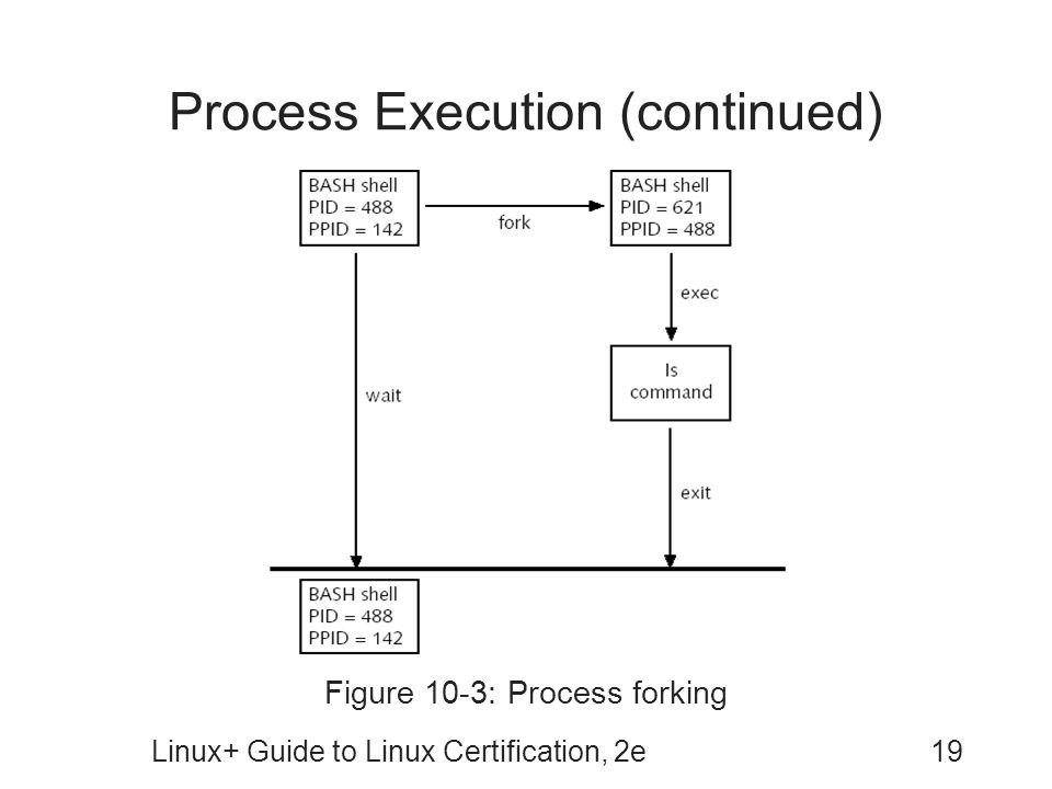 Process Execution (continued)