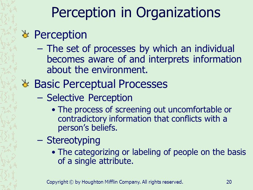 Perception in Organizations