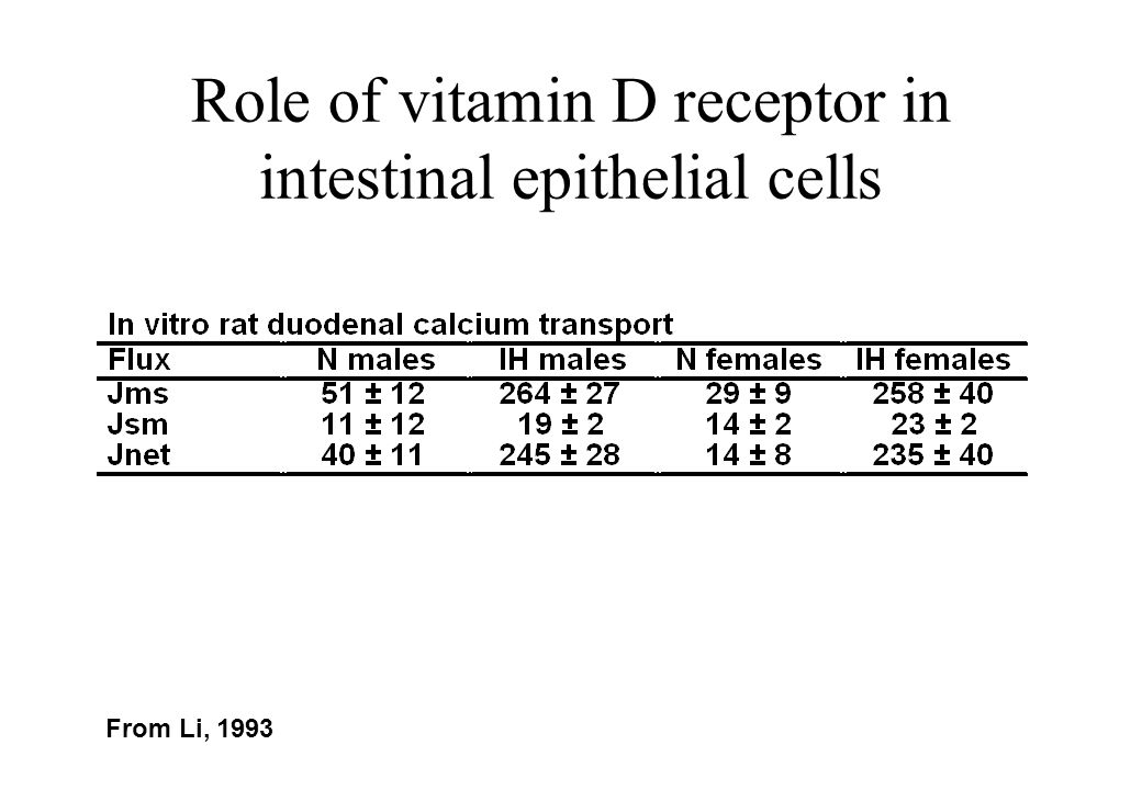 Role of vitamin D receptor in intestinal epithelial cells