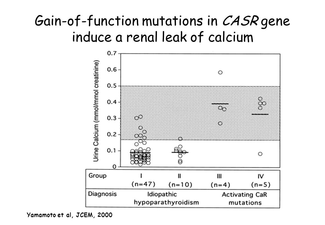 Gain-of-function mutations in CASR gene induce a renal leak of calcium
