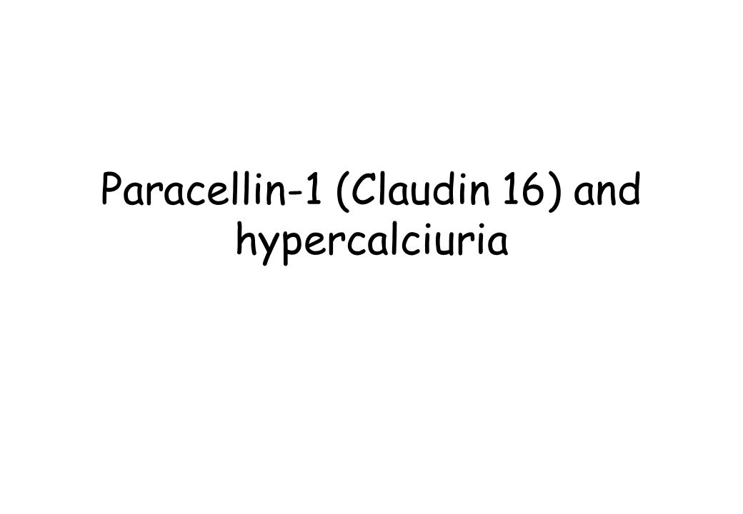 Paracellin-1 (Claudin 16) and hypercalciuria