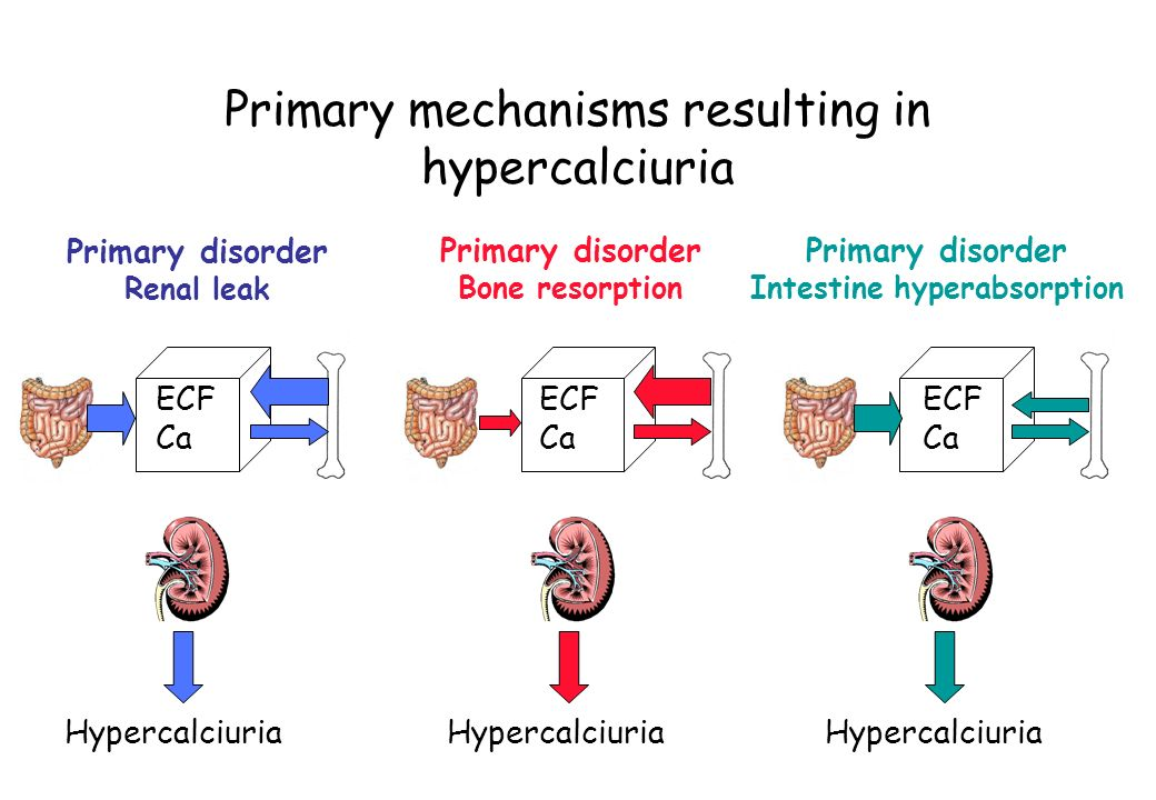 Primary mechanisms resulting in hypercalciuria