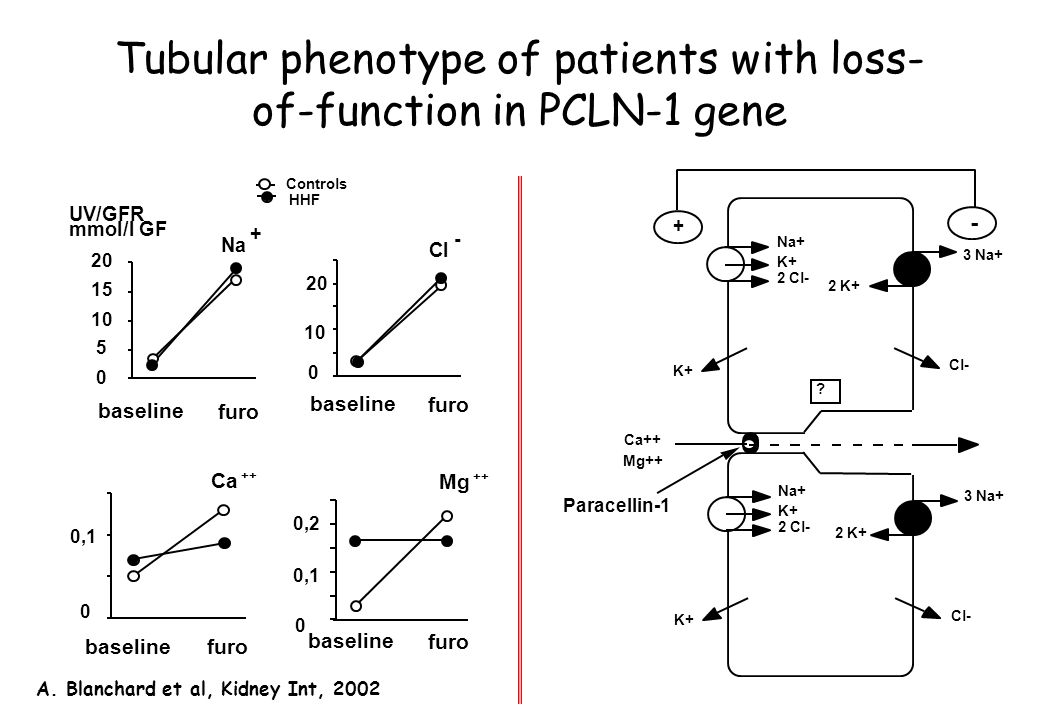 Tubular phenotype of patients with loss-of-function in PCLN-1 gene