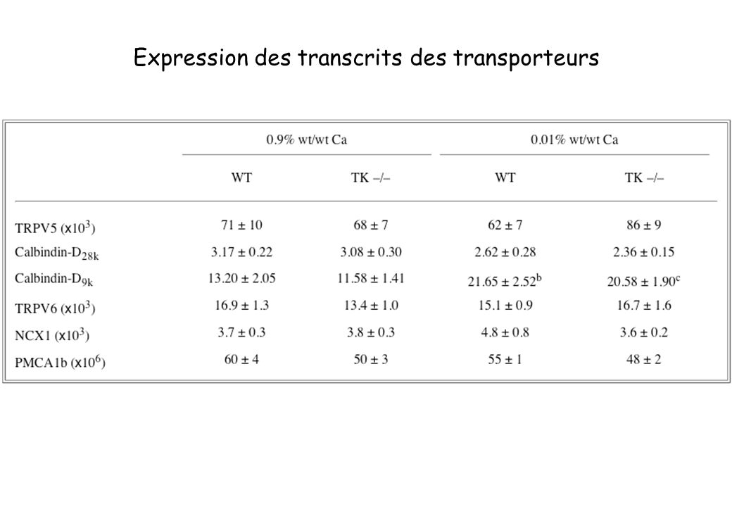 Expression des transcrits des transporteurs