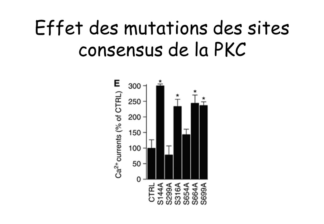 Effet des mutations des sites consensus de la PKC