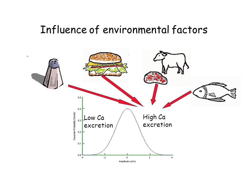 Influence of environmental factors