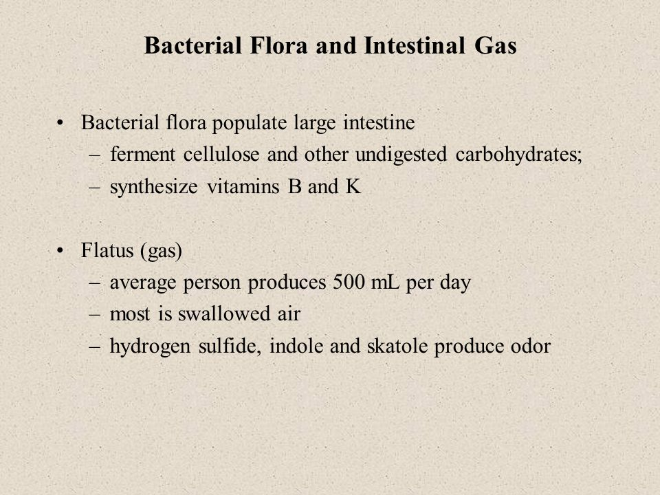 Bacterial Flora and Intestinal Gas