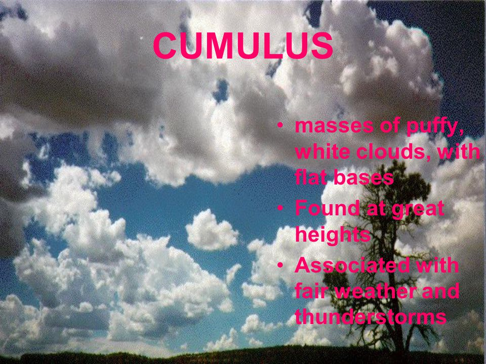 CUMULUS masses of puffy, white clouds, with flat bases