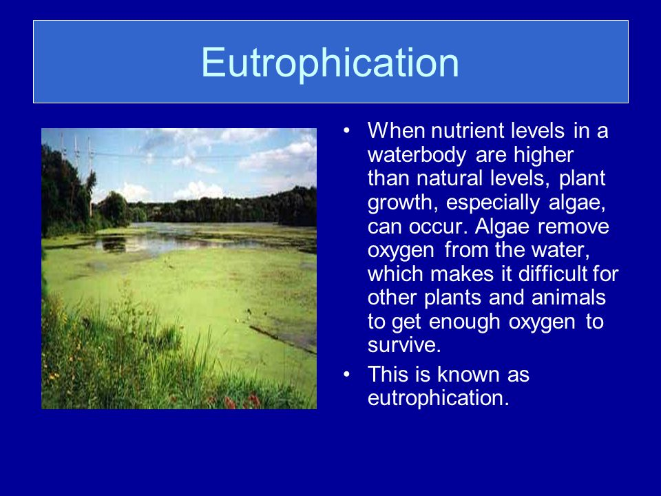 Introduction to Eutrophication