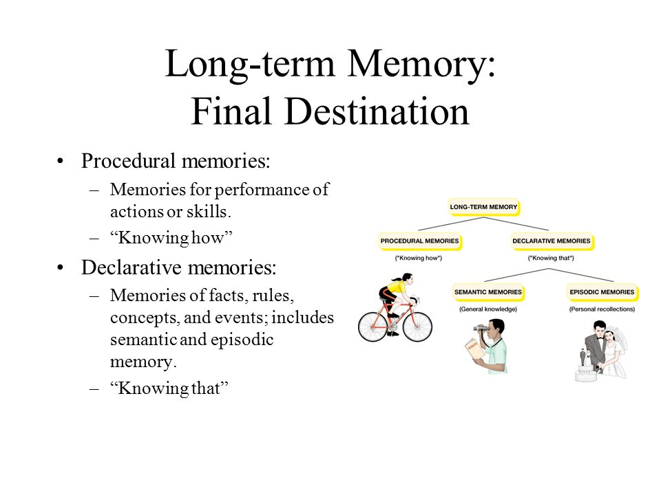Long-term Memory: Final Destination