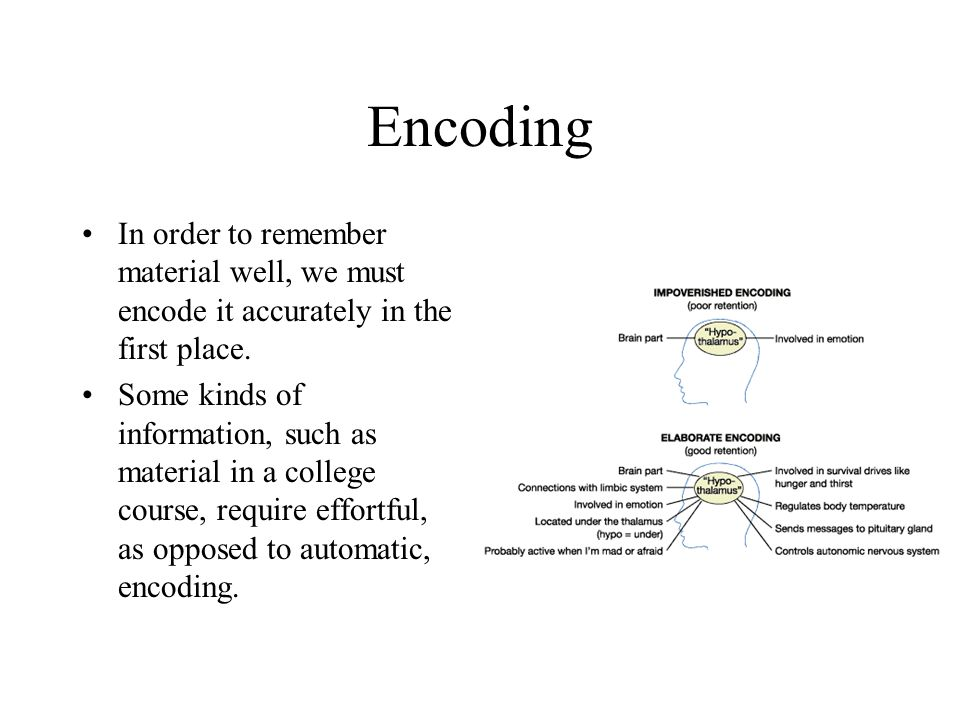 Encoding In order to remember material well, we must encode it accurately in the first place.