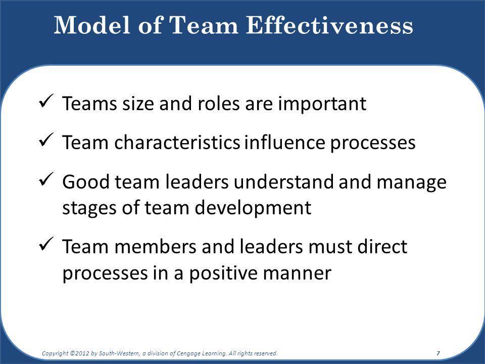 Model of Team Effectiveness