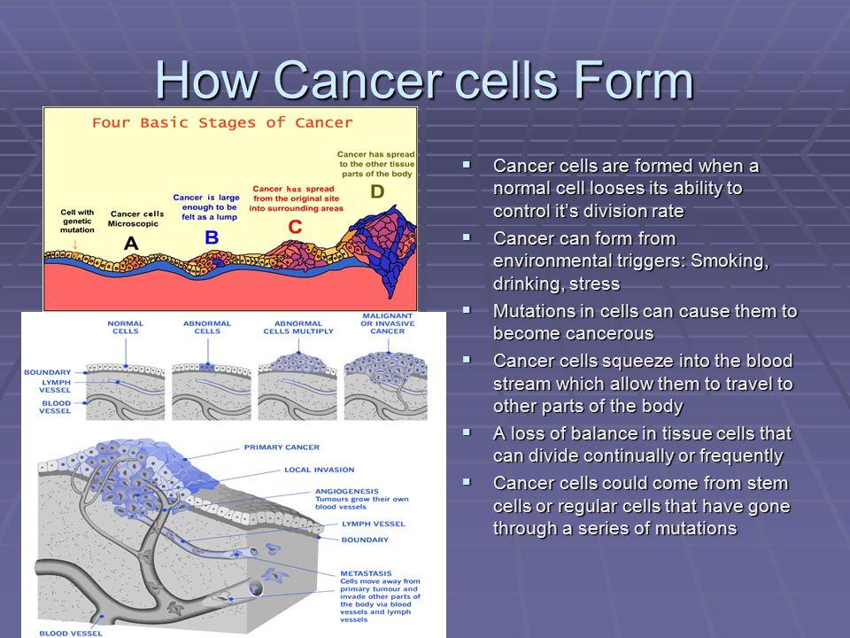 The Genetics of Cancer Presenters Patrick Day Rachael Hanks - ppt ...