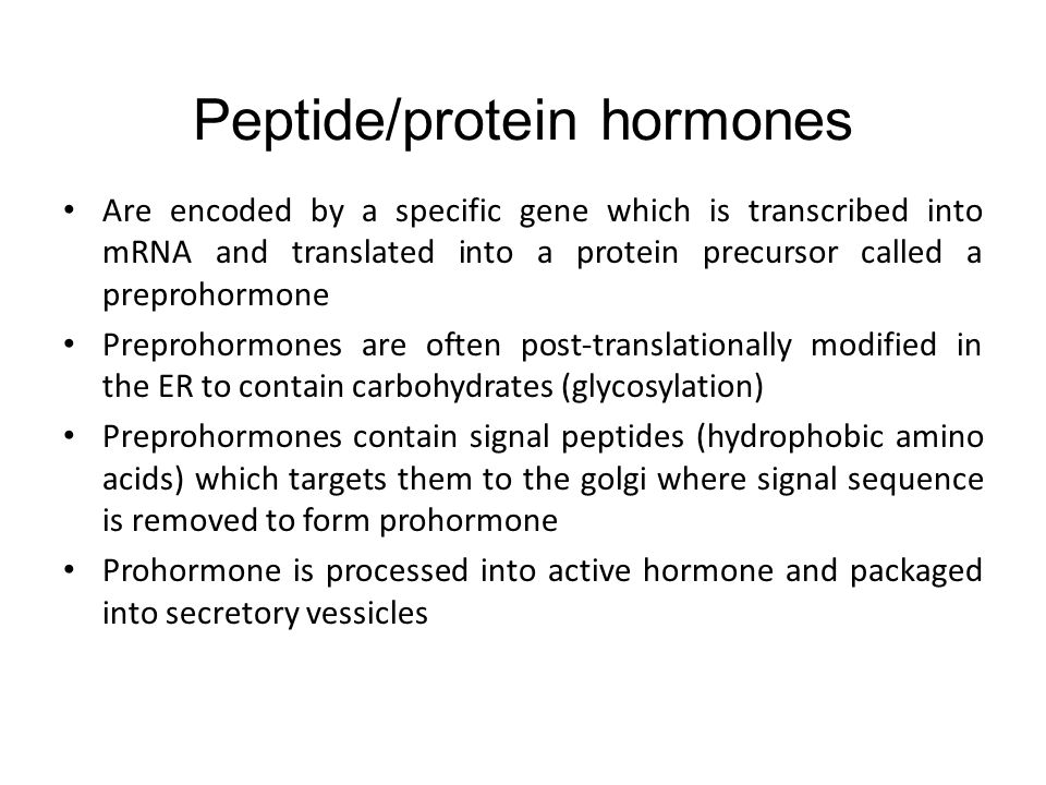 Molecular Basis Of Peptide Hormone Production Ppt Video Online
