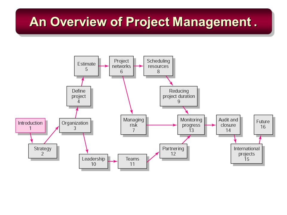 project management managerial process pdf