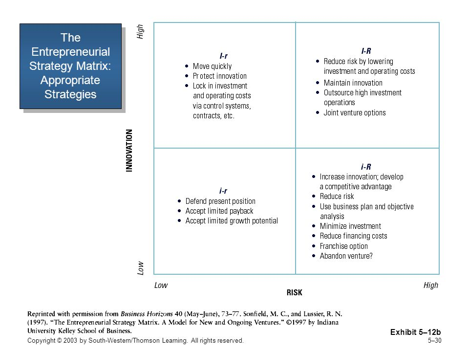 The Entrepreneurial Strategy Matrix: Appropriate Strategies