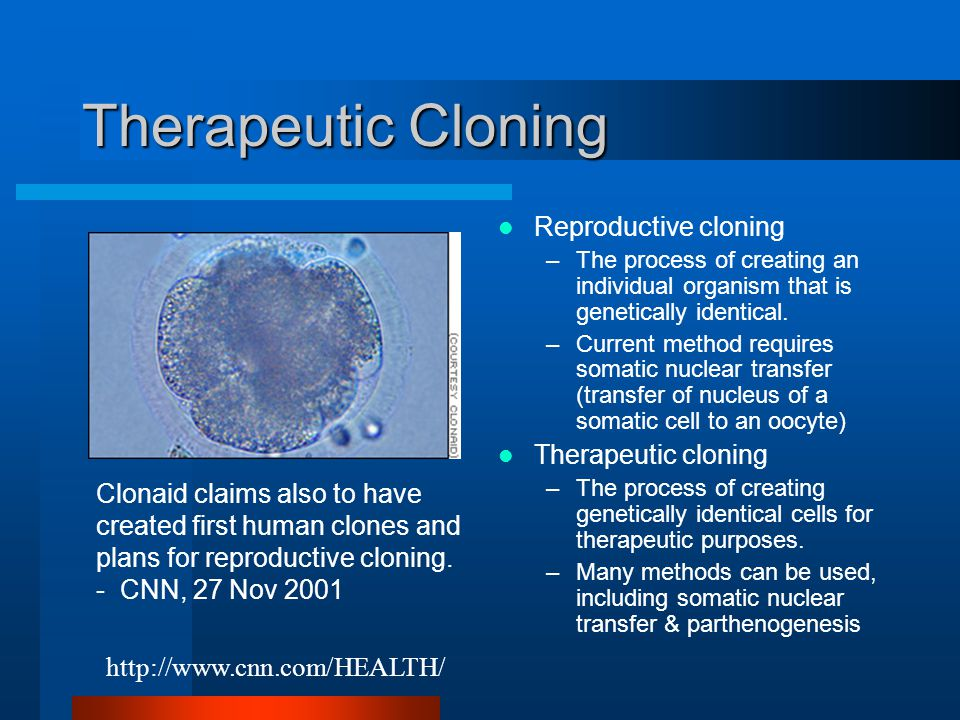 morality of human cloning The idea of cloning human beings used to only be found in science fiction novels after the cloning of the sheep, dolly, there came the possibility of making it a reality the technique used to make the clone of the sheep is called somatic cell nuclear transfer soon after news of dolly reached.