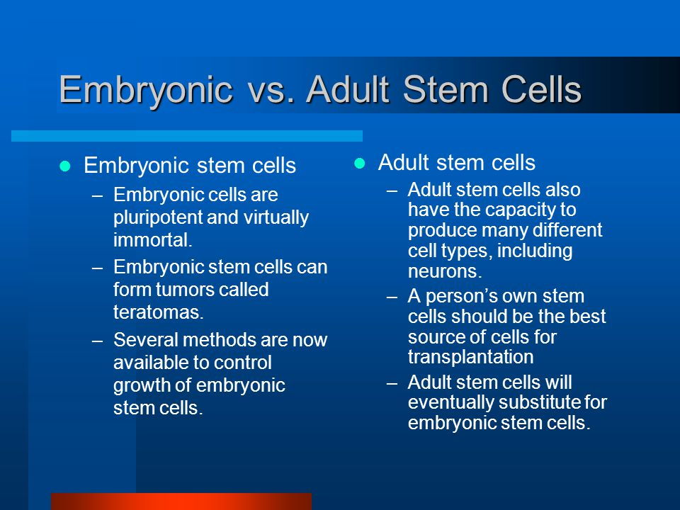 adult stem cell vs embryonic stem cell