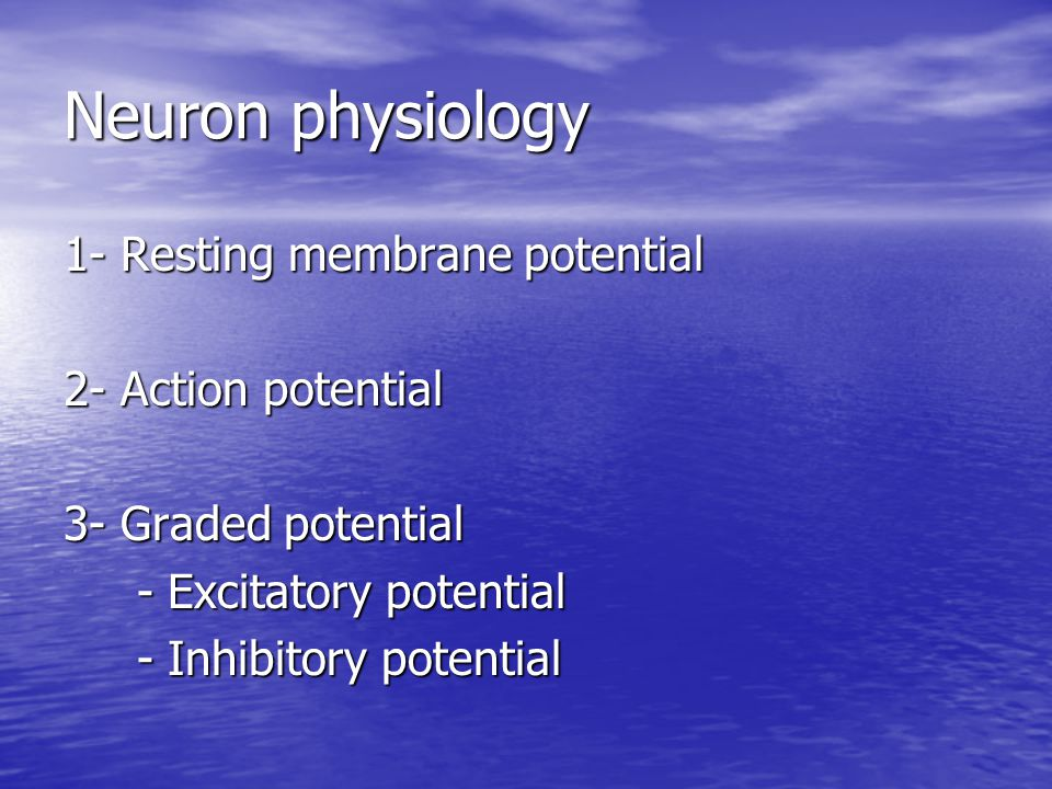 Neuron physiology 1- Resting membrane potential 2- Action potential
