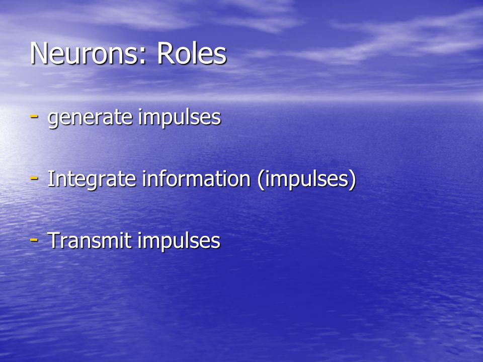 Neurons: Roles generate impulses Integrate information (impulses)
