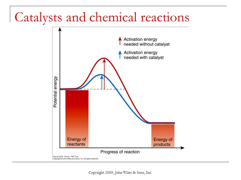 a study on role catalysts in chemical reactions A substance that decreases the activation energy needed to start a chemical reaction and as a result also increases the rate of a chemical reaction.