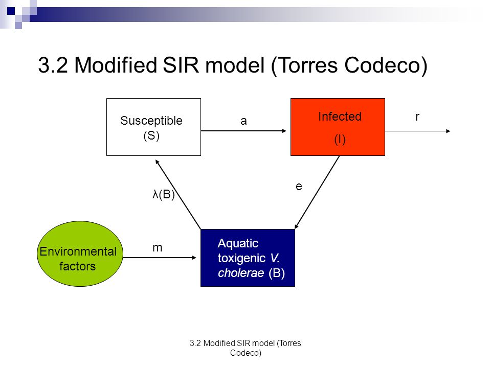 3.2 Modified SIR model (Torres Codeco)