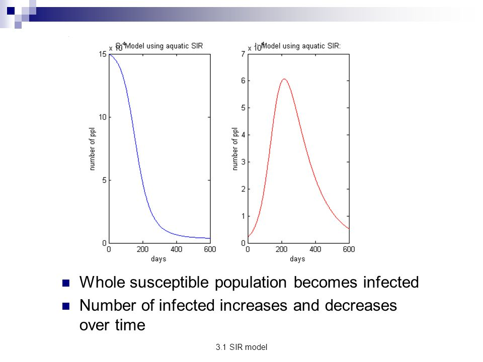 Whole susceptible population becomes infected
