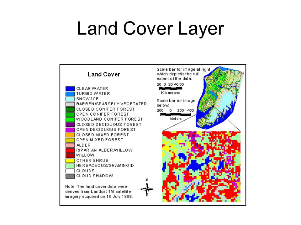 Land Cover Layer