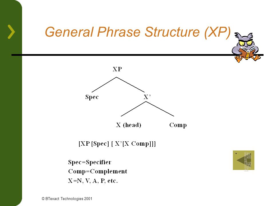 General Phrase Structure (XP)