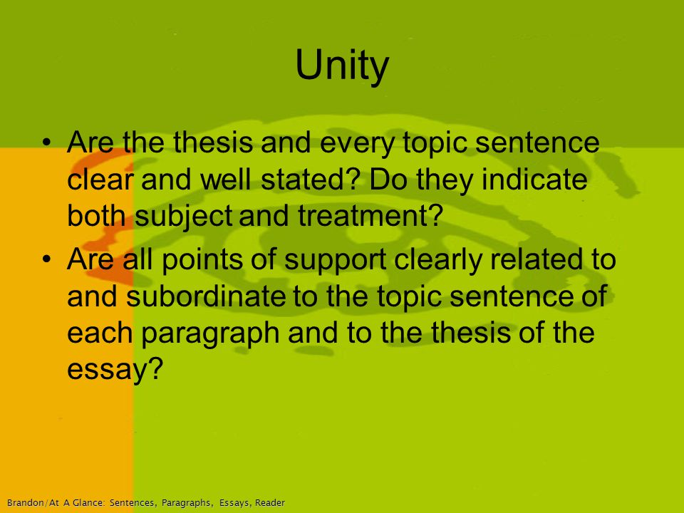 essay on unity essay national unity essay on unity english essay on many multiple against animal rights essay write