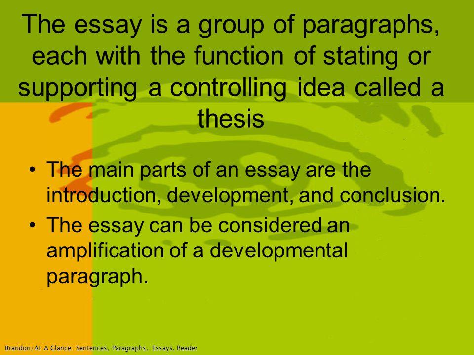 the main point essay