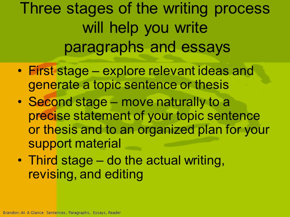 Thesis stages