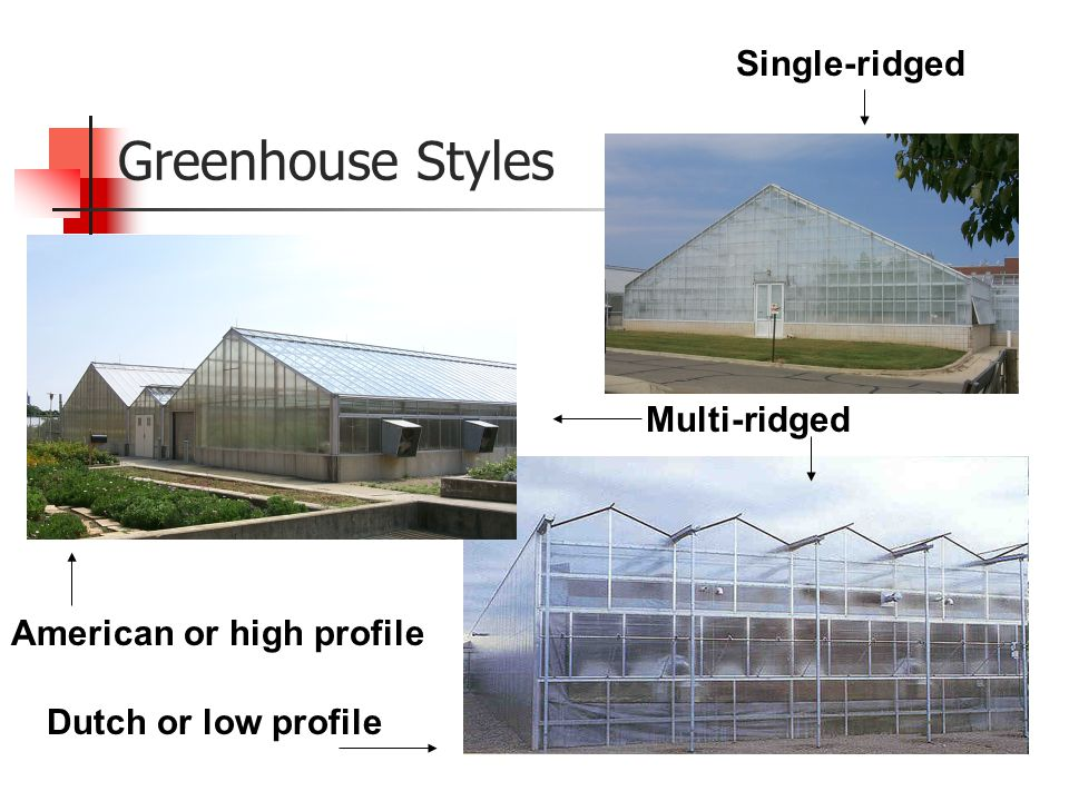 H Cs 521 Greenhouse Crop Production Ppt Download